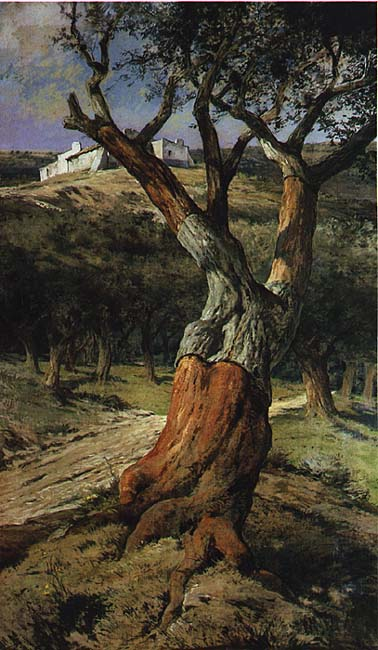 A magnificent oil of a cork oak (Quercus suber) painted by King Charles I in the Alentejo, southern Portugal.
