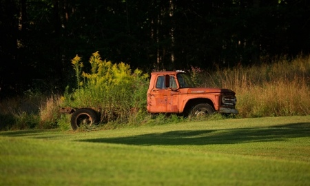 An abandoned truck grows roots in East Kentucky.